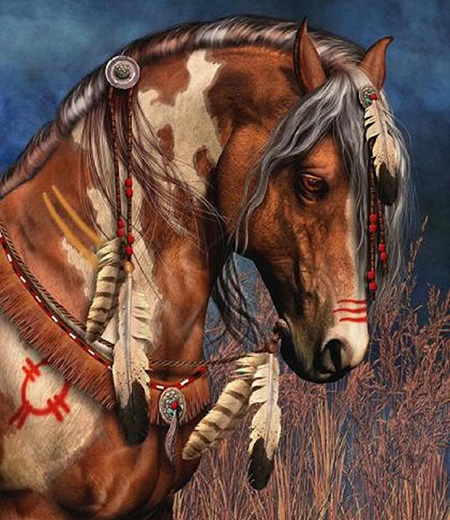 American Indian Horses